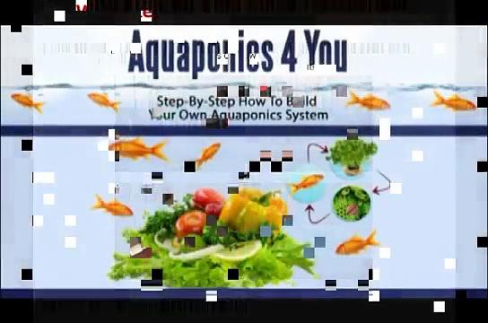Aquaponics 4 You – Aquaponics 4 You Review