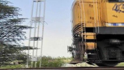 New Lynn trains