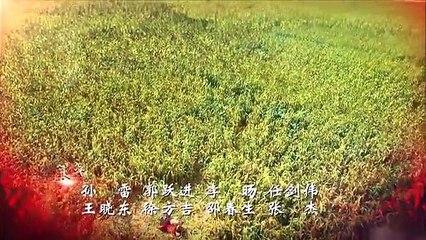 紅高粱 第59集 Red Sorghum Ep59