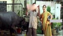 Telugu Comedy Scenes Brahmanandam with Kovai Sarala, MS Narayana & L.B.Sriram (2) in Ottesi Cheputunna