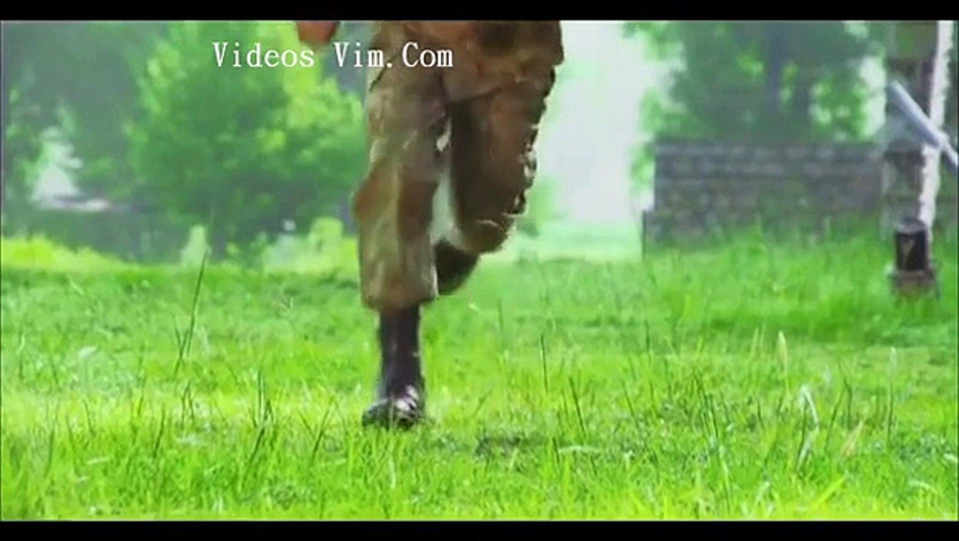 ISPR documentary on Pakistan Armed Forces winner of Rome Film festival best documentary award