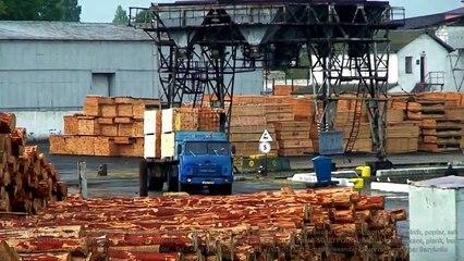 Exports (imports) pine timber/lumber from Ukraine to Turkey - Belgorod-Dniester port. Supplies: Gemlik, Gebze, Samsun, Eregli, Izmir, Mersin