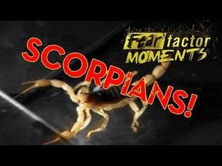 Fear Factor Moments | Scorpion Sludge
