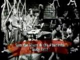 Sam the Sham & The Pharaohs - Wooly Bully - 1967