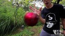 Deux jongleurs japonais de Kendama