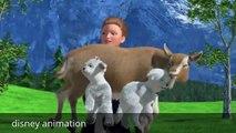 Barbie Life in the Dreamhouse Barbie Princess cartoons-animation Barbie Princess New style 2014