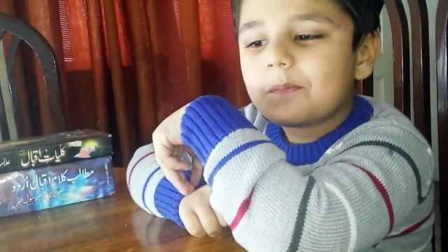 Shaheen of Iqbal Zidaan Ahmed Slams Anti Iqbal Media