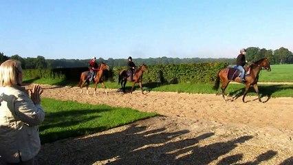 2013-09-26 Entrainement de chevaux
