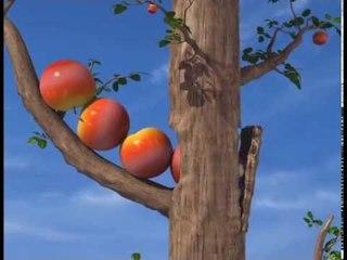 La Chouette - Pluie de pommes