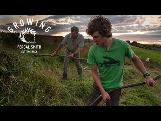Fergal Smith - Cutting Back | Growing - Episode 14