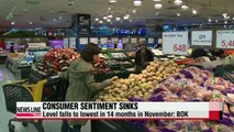 Consumer sentiment dips to lowest level in 14 months in Nov.