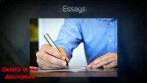 Essay Writting Company
