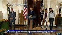 Obama grants traditional pardon to Thanksgiving turkeys