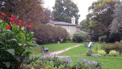 The History of Colborne Lodge | Cranium Cookie S1E3