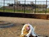 Amazing    Arab VS Lion    Who Is Win