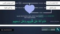 Sealed Hearts - World Order - Quran Gems - NAK Illustrated