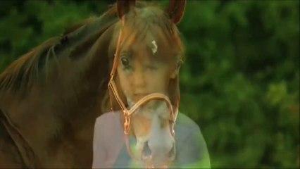 Cheval - Конь