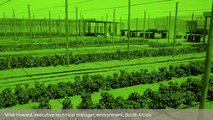"""AECOM Maximizes """"Green Gold"""" for Job Creation in South Africa"""