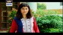 Dil Nahi Manta Episode 3 Full on Ary Digital 29th November 2014