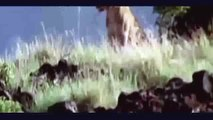 Amazing and mysterious movies,Discovery History, amazing wild animal, amazing videos, National Geogr