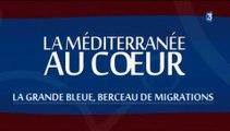 Revoir Méditerranée au Coeur, berceau des migrations