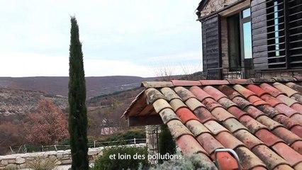 Miel de Provence, un concentré de douceurs