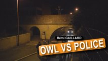 Owl Vs Police (Rémi Gaillard)