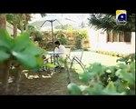Malika e Aliya Episode 34 Full on Geo Tv - Malika e Aliya 15 October 2014_2
