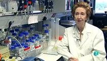 Margarita Salas: Biologia de excelencia