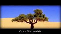 khaled - Hiya Hiya ft  Pitbull
