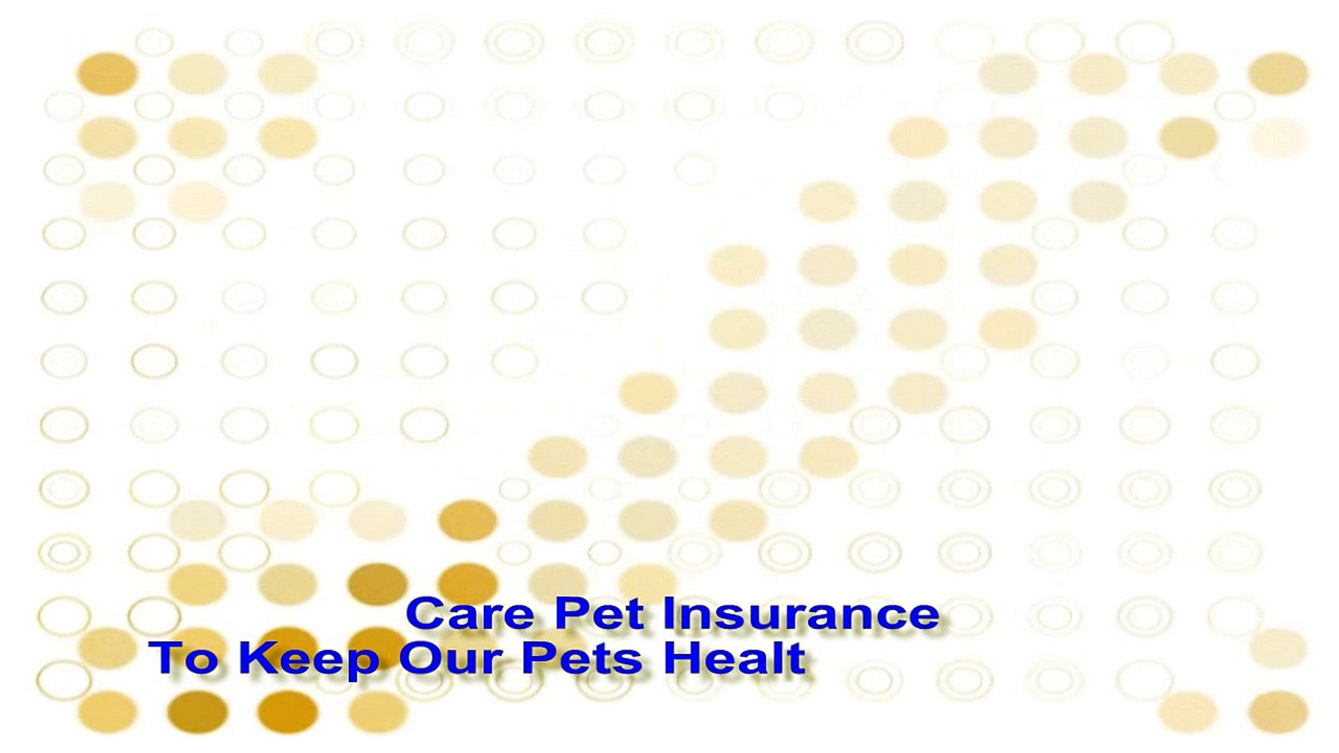 Care Pet Insurance - To Keep Our Pets Healthy and Happy! Tips and great ideas for you and your pets.