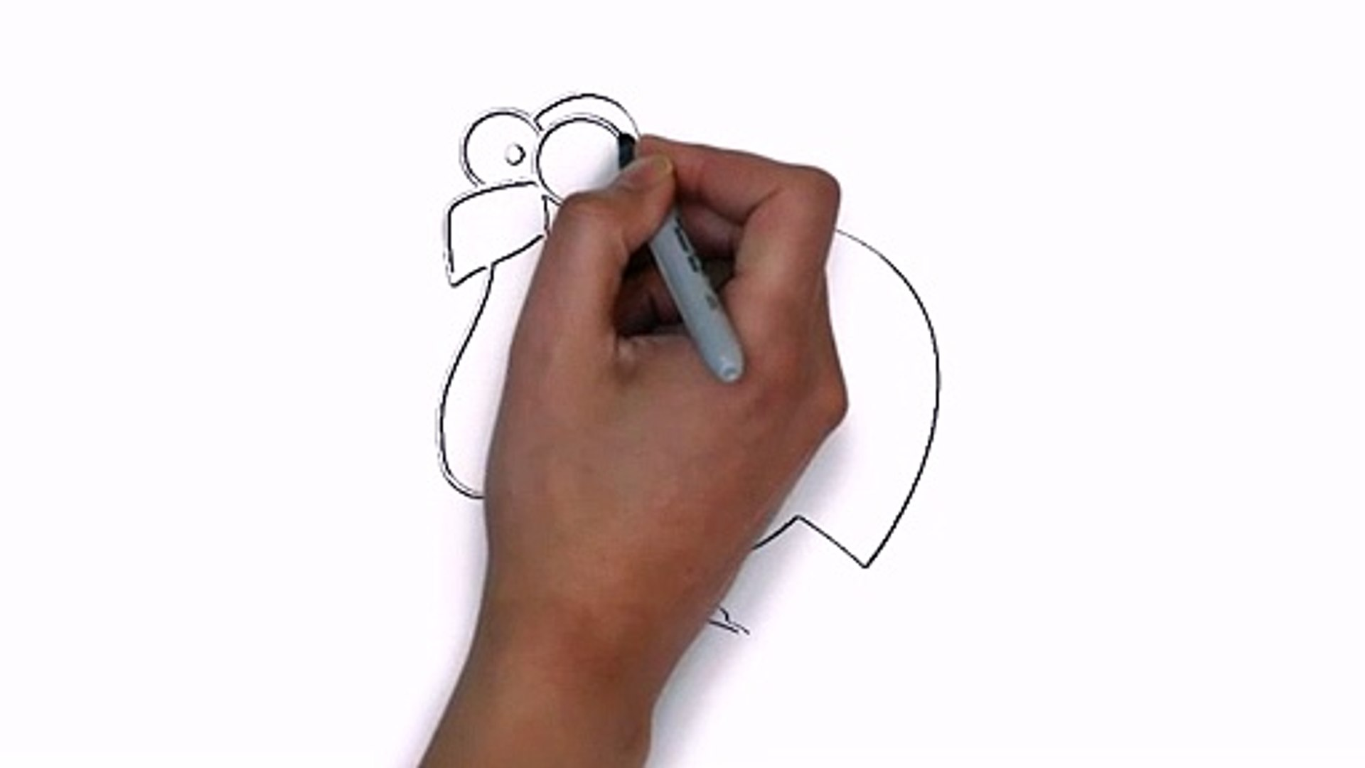 How To Draw A Rooster Get Paid To Draw