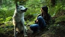 Watch Shana, The Wolfs Music Shana, das Wolfsmädchen Full Movie Online