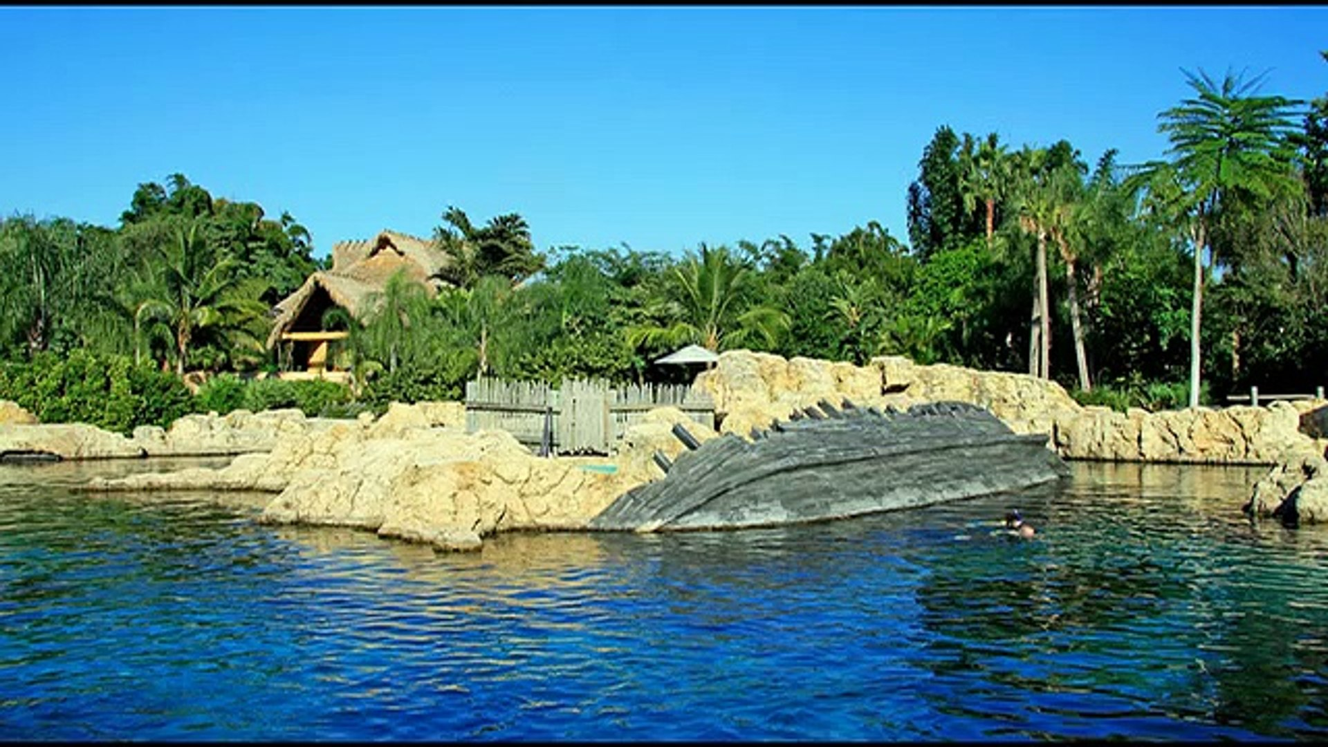 Discovery Cove - discovery channel documentary