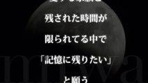 miwa/月食~winter moon~ (TBSドラマ 『ママとパパが生きる理由。』 主題歌)