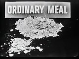 VINTAGE 1953 GAINES DOG FOOD COMMERCIAL ~ 59 YEARS AFTER EATING GAINES MEAL, HE IS IN DOGGY HEAVEN
