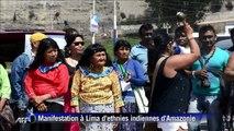 Amazonie: des ethnies indiennes manifestent pour leurs terres