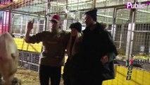 Exclu Vidéo : Petite frayeur pour Xavier et Tatiana dans une cage avec un fauve au cirque Pinder !