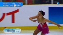 2014 Japanese Junior Nationals SP Highlights