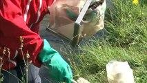 WIKHYDRO -  Hydrobiologiste - retour terrain