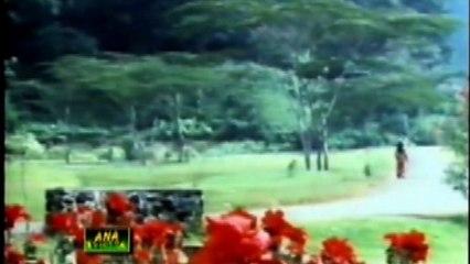 Sona Na Chandi Na Koi Mehal ! Akhlak Ahmed ! Beautiful Lollywood Track HD ! mG