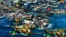 Le 8ème continent, 269.000 tonnes de déchets plastiques dans les océans