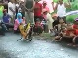 Ce singe est un motard hors pair