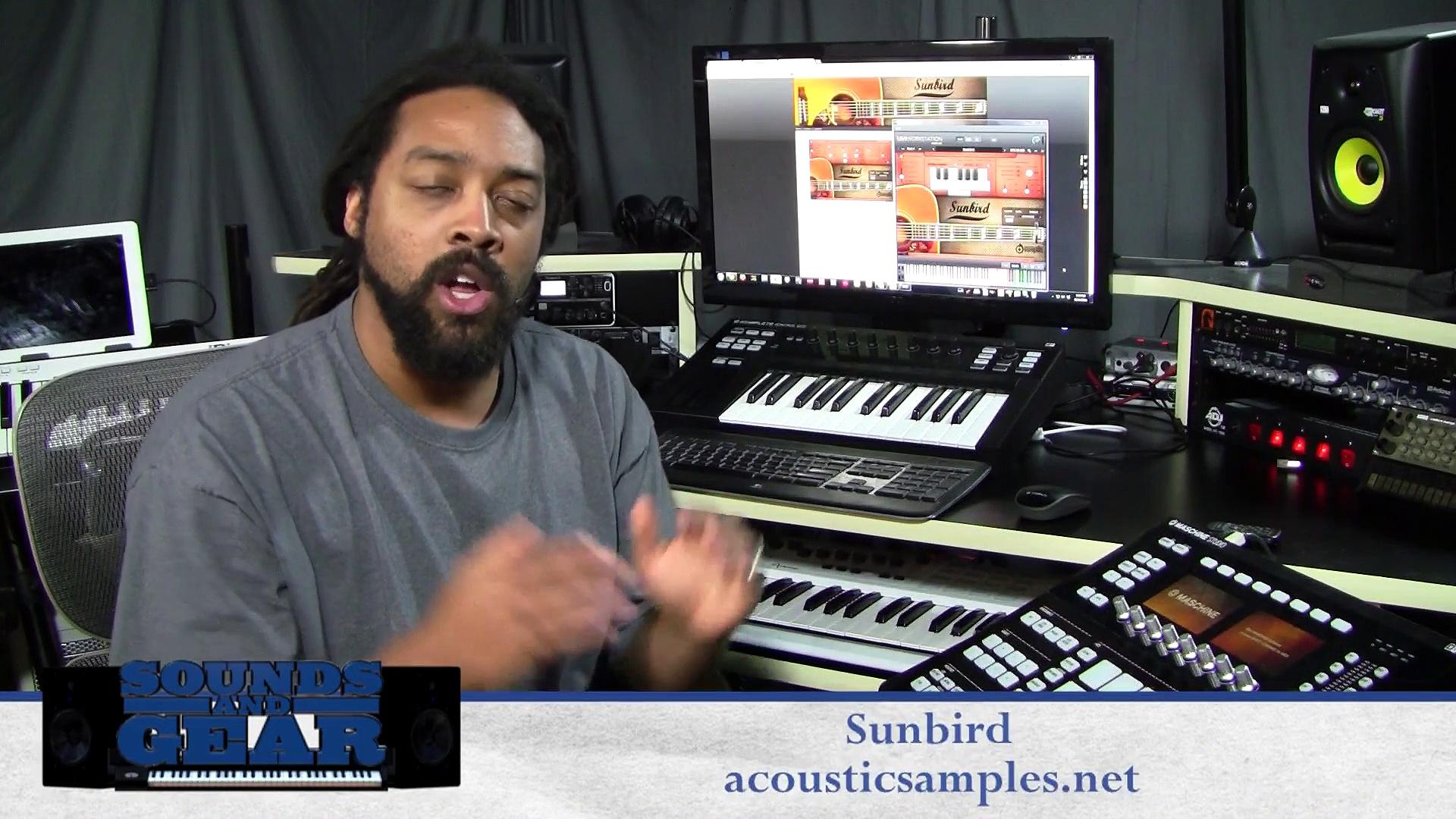 Review: Acoustic Samples Sunbird Acoustic Guitar