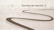 Carnets De Marche - Episode 1 - Nouvelle-Zélande : La Piste D'Hollyford [1/10]