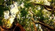 Wildest Indochina_Thailand