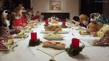 13 chiens et 1 chat font un repas de Noël