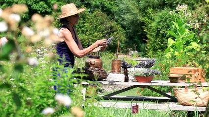Aromacologia Aromaterapia il potere delle piante