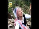 Runicha Me Naag Lapeta Leve | Rajasthani Desi Bhajan | Ramdev Ji Bhajan