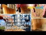 Wholesale Bulk USA Wheat Broker, USA Wheat Export, Where to Buy Bulk USA Wheat, USA Wheat in Bulk, Buy